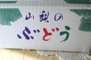 のぼさん葡萄箱
