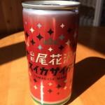 山形県 延沢銀山/日本三雪 出羽尾花沢